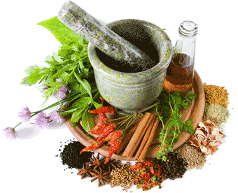 gential herpes herbs and natural cures